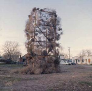 Tumbleweeds Catcher, 1972