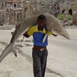 Daily Life: 1st prize singles  -Omar Feisal, Somalia, for Reuters - Man carries a shark through the streets of Mogadishu, Somalia, 23 September