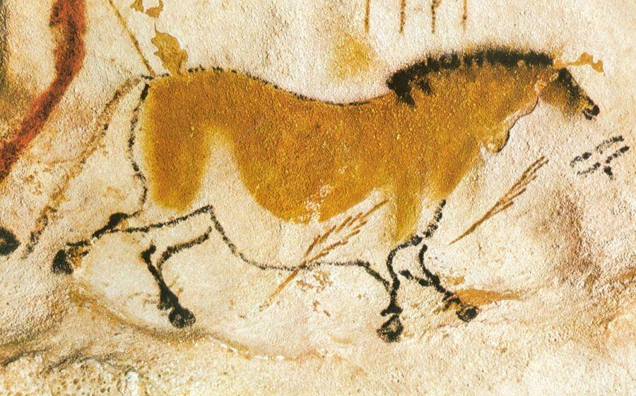 Homo sapiens la grande storia della diversit umana - Simboli di immagini della francia ...